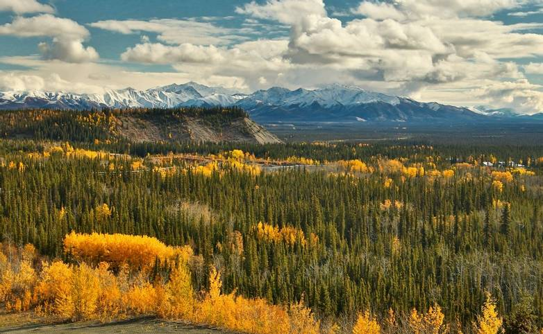 View of Wrangell - St. Elias mountains from Glenn HWY in Alaska, beatiful colorful autumn time from Glenn highway in Alaska,…