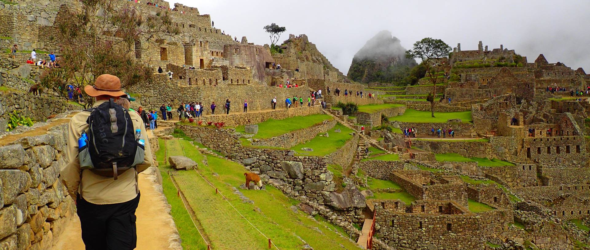 Walking The Terraces Of Machu Picchu