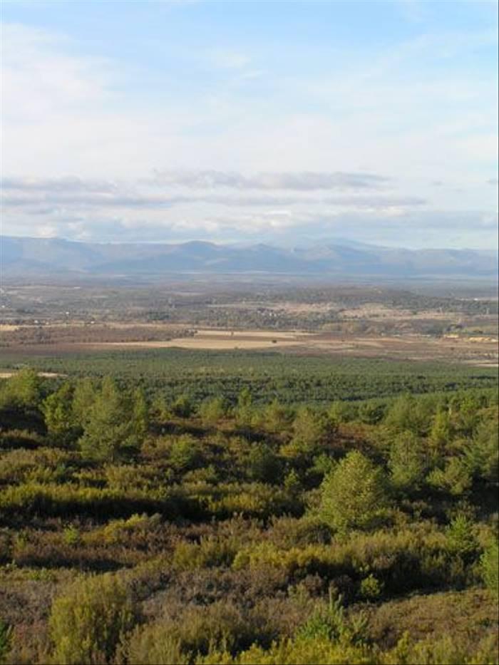 Rural Spain (Thomas Mills)