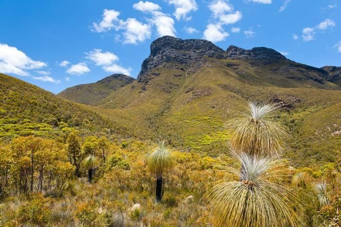Stirling Range National Park, Western Australia. shutterstock_76047391.jpg