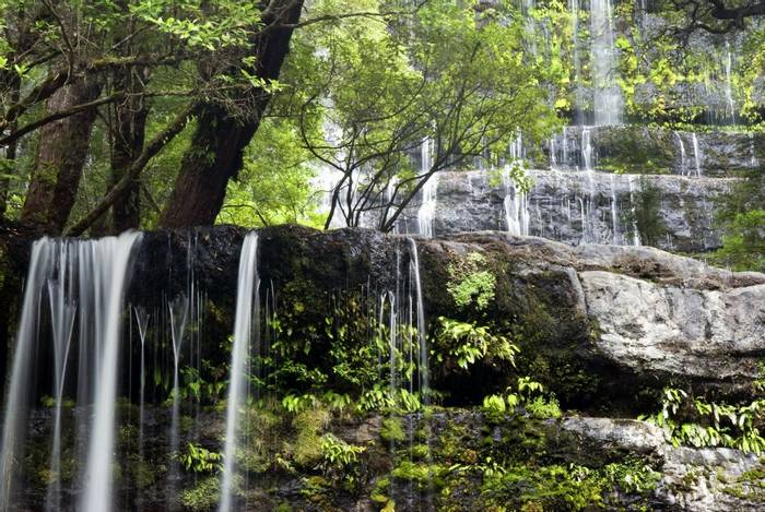 Russell Falls, Mount Field National park, Tasmania, Australia. shutterstock_178002647.jpg