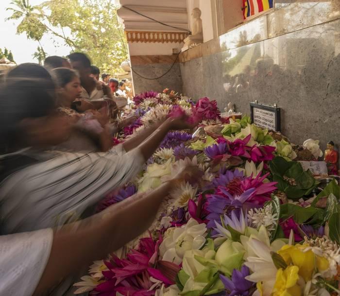 Anuradhapura (John Archer Thomson)