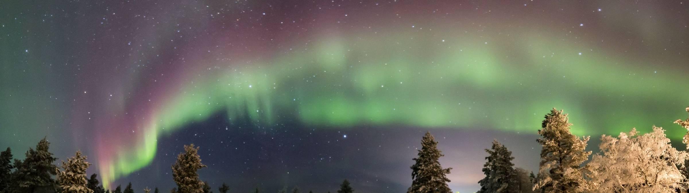 Inari Credit Matt Robinson