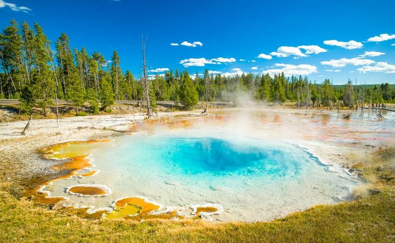 American Rockies - Yellowstone National Park - AdobeStock_137621127.jpeg