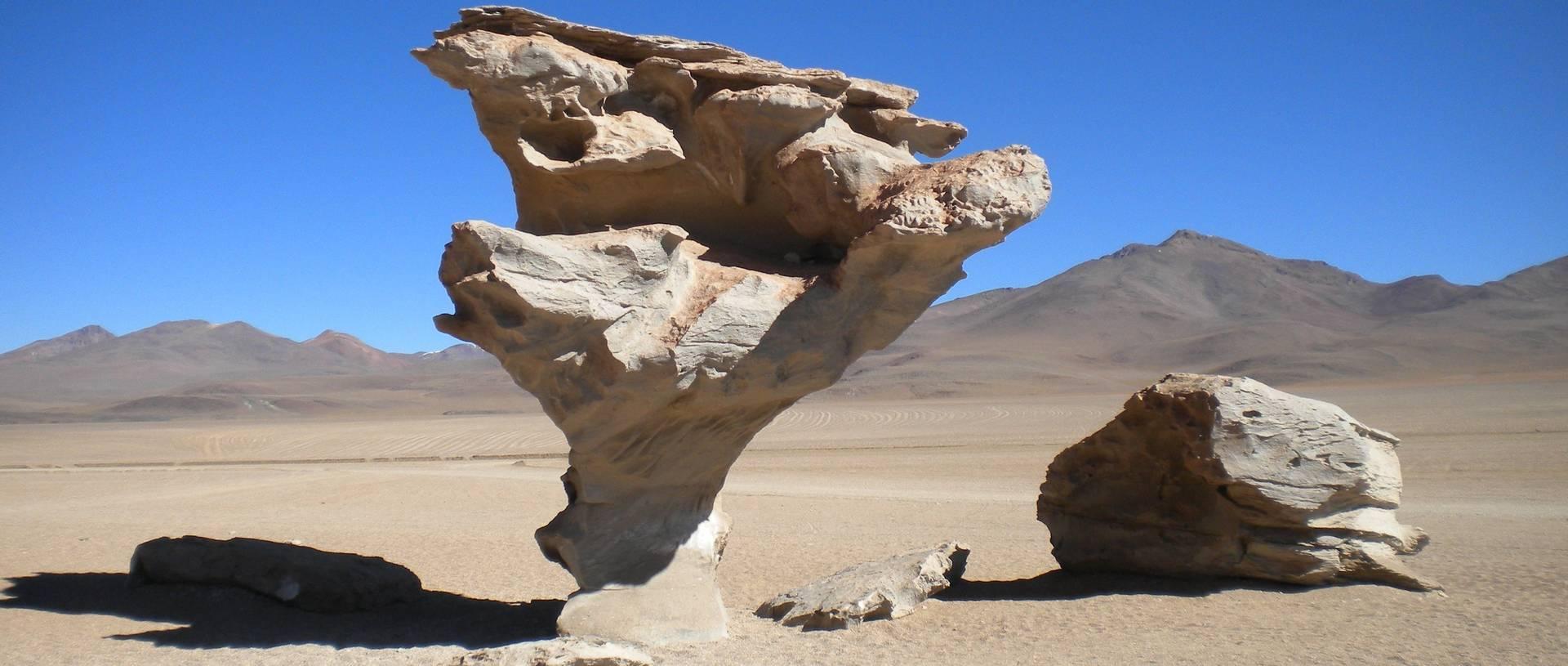 Arbol De Piedra (Stone Tree) In Dali'S Desert