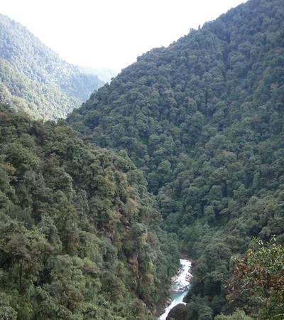 Valley above Yuksom