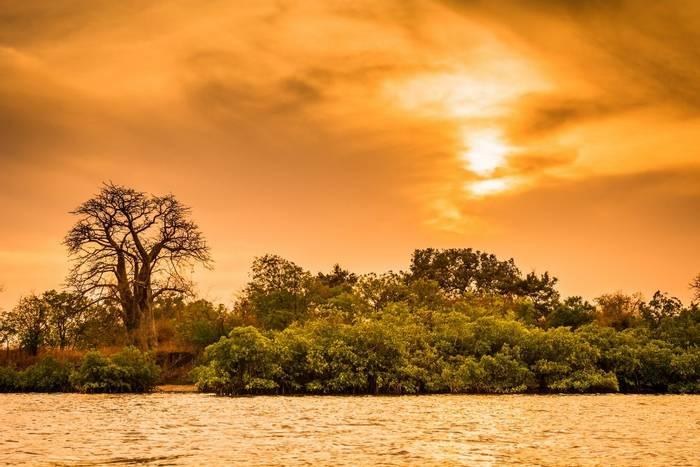 Toubacouta at sunset, Senegal shutterstock_1163994028.jpg
