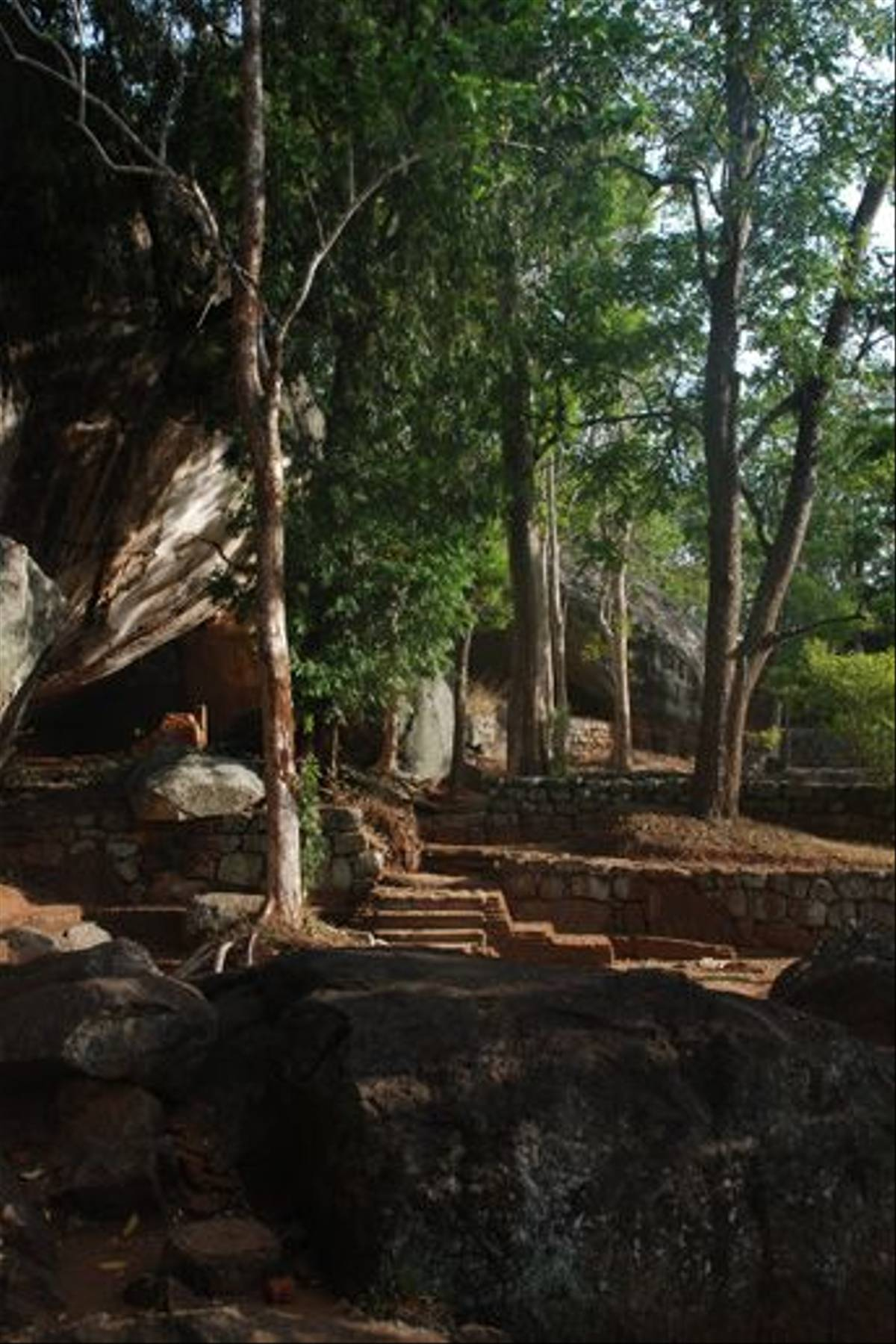 The start of the climb up Sigiriya rock (Thomas Mills)