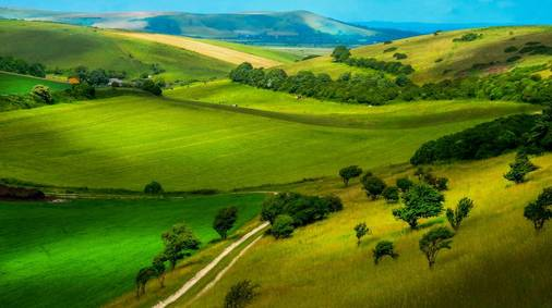 7-Night South Downs Spring & Winter Walking Holiday