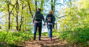 Couple waking in woodlands