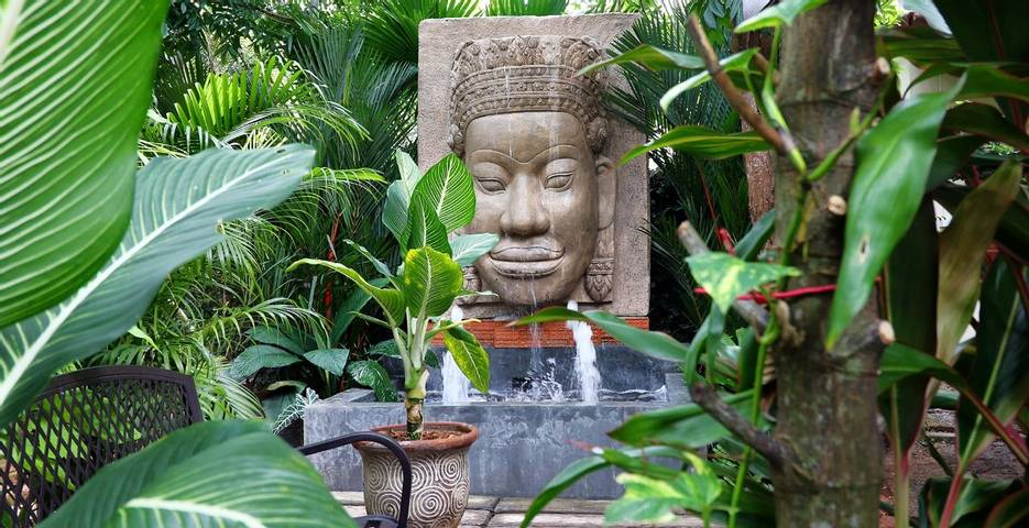 Review of Phuket Cleanse