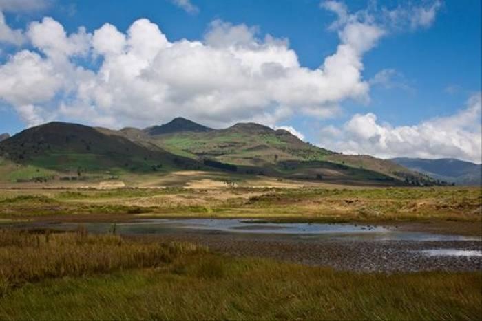Bale Mountains (Dani Free)