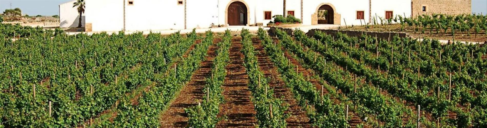 Baglio Donna Franca, Sicily, Italy (13).jpg