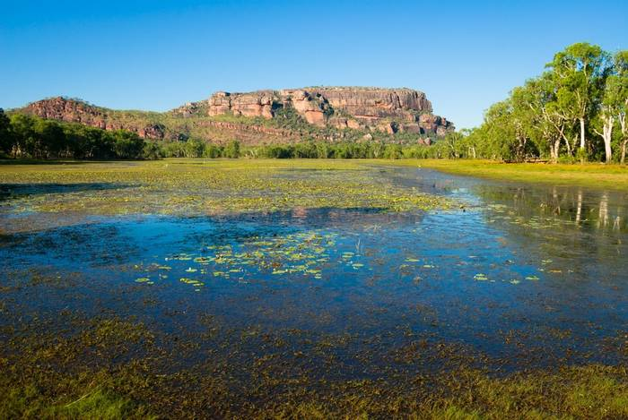 Nourlangie from Anbangbang Billabong, Kakadu National Park, Australia shutterstock_234641947.jpg