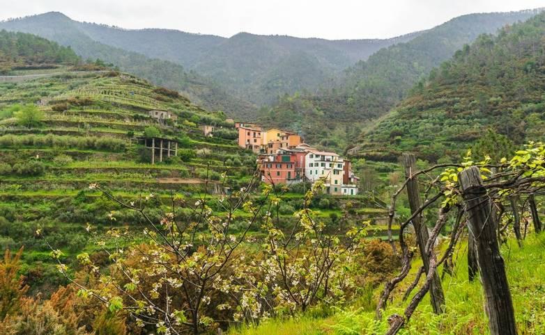 Italy - Cinque Terre - Cooking & Walking - AdobeStock_268636697.jpeg