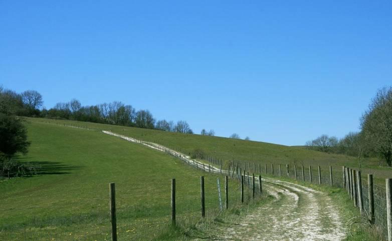 Barnsfarm Hill Path from Washington Village.JPG