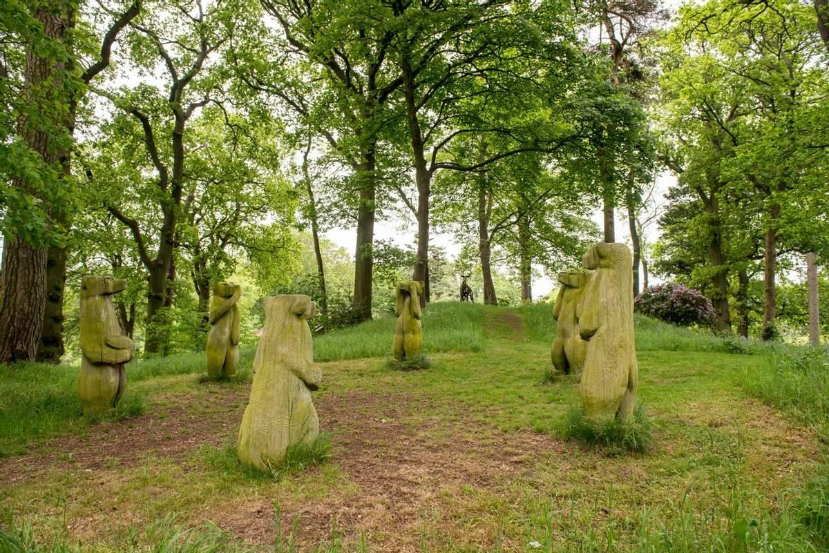 10694_0066 - Longmynd House - Garden