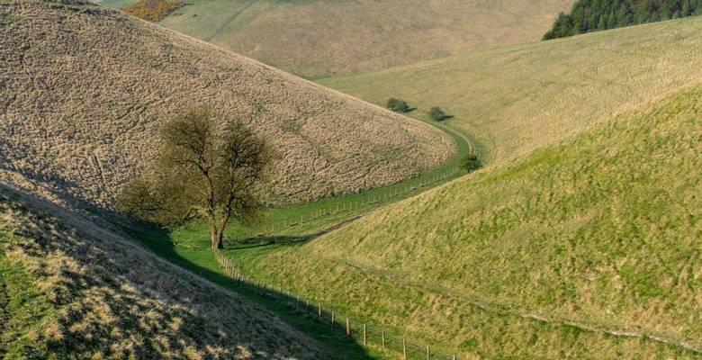 North York Moors Holidays