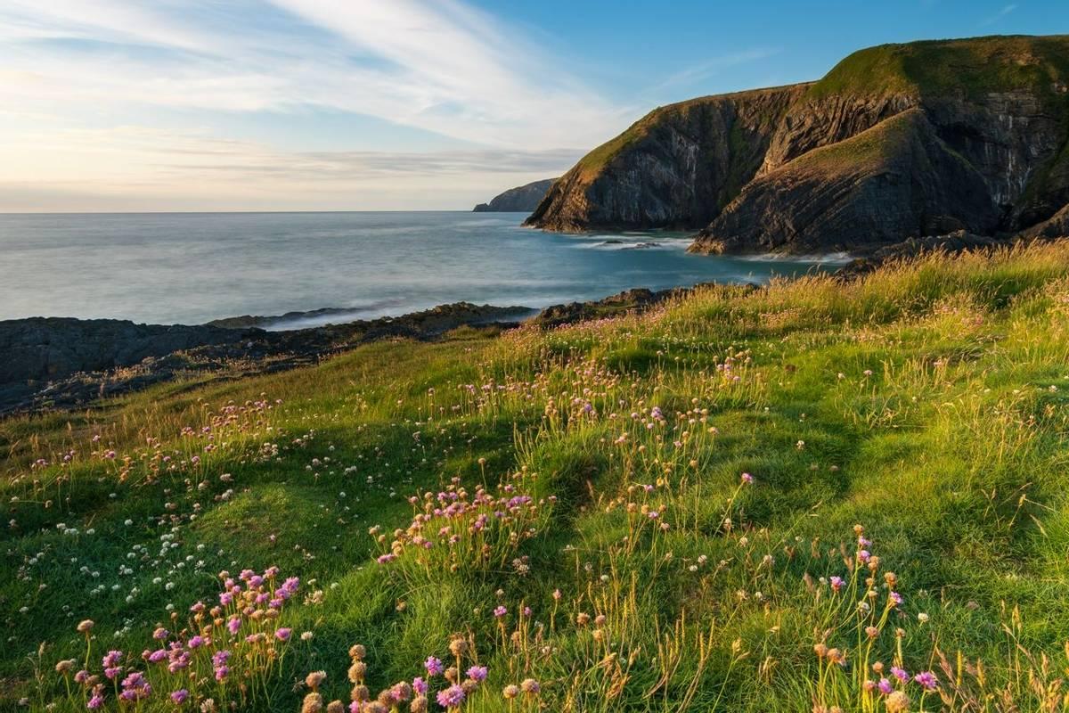 Pembrokeshire Coast Path - Guided Trail - AdobeStock_262206707.jpeg
