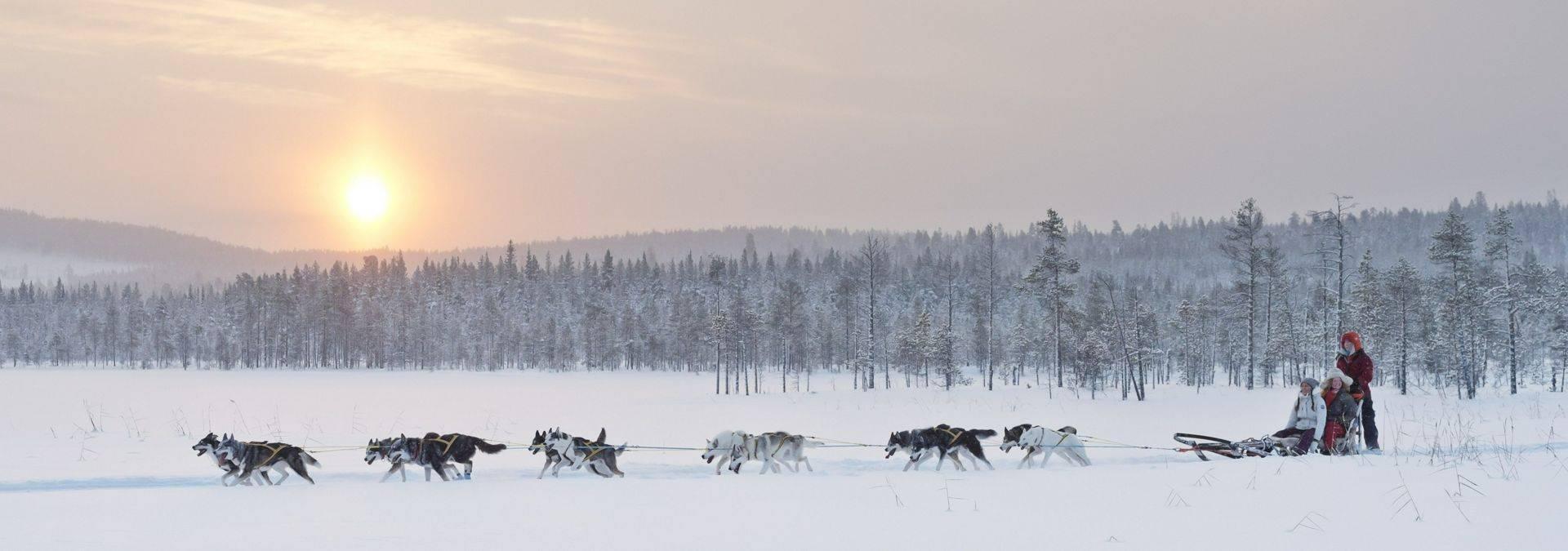 anna_öhlund-dog_sledding_adventure-6470.jpg Credit Anna Öhlund & imagebank.sweden.se.jpg