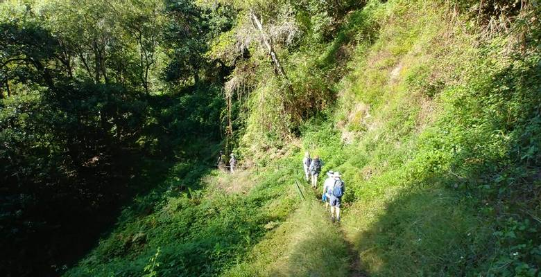 MadeiraGuided Walking