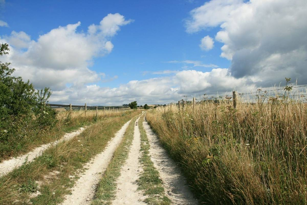 Path heading north from Cissbury Ring.JPG