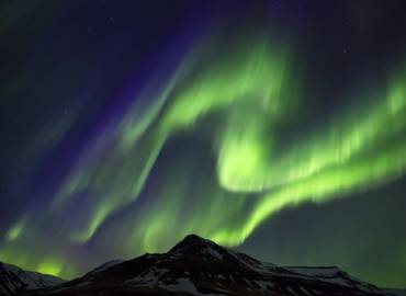 Iceland - Gyr Falcons & the Northern Lights