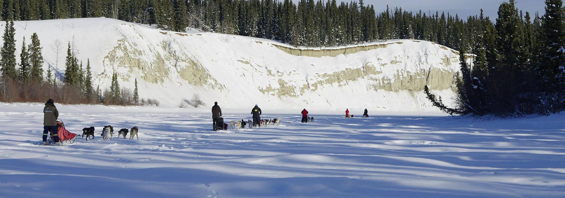 Dog Sledding 6 Credit Arctic Range Adventure Ltd