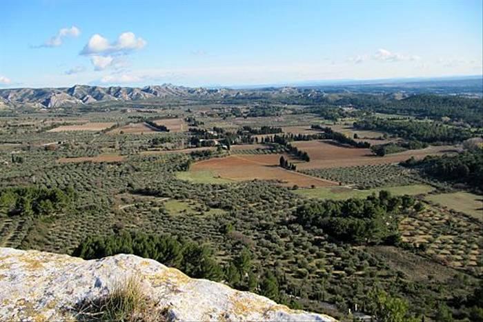 Provence farmland (Christine Haslegrave)
