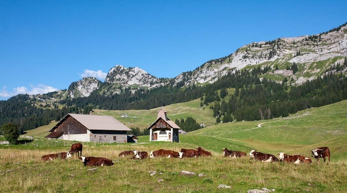 France - Annecy - AdobeStock_89780653.jpeg