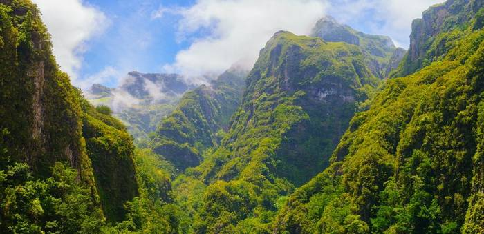 Madeira shutterstock_1007292091.jpg
