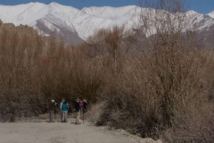 Naturetrek group in Ladakh (Russell Scott)