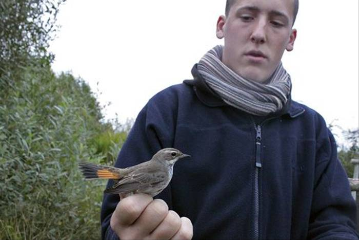 Birdringer Craig with a Bluethroat (Daniel Green)
