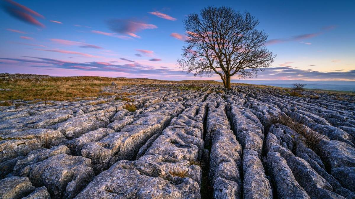 Above Malham Village in the Yorkshire Dales there is an area of Limestone Pavement known as Malham Lings