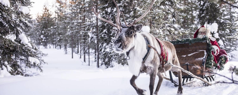 Kimmo Syväri and visit finland (3).jpg