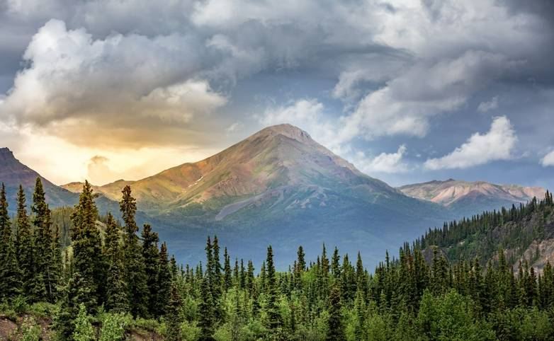 America-Alaska-Denali National Park-AdobeStock_216335077.jpeg