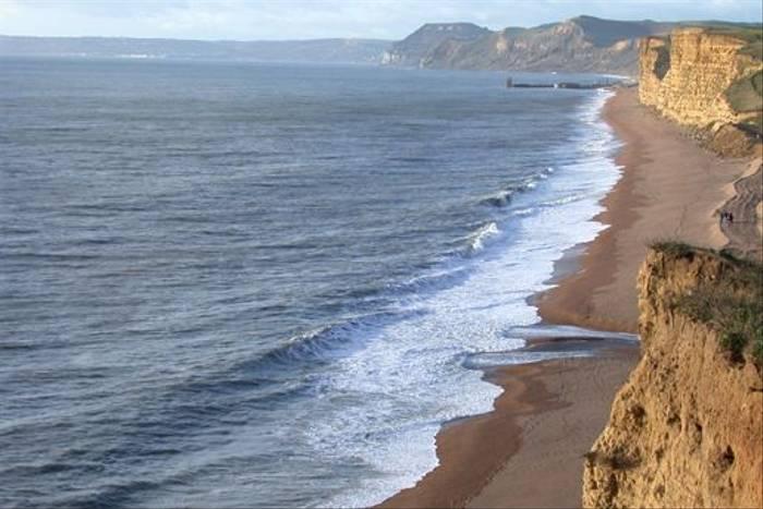 Dorset coastline (Tom Brereton)