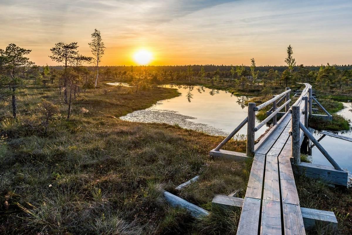 Kemeri National Park Shutterstock 434823388