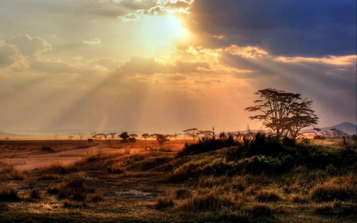 Botswana Scenic. shutterstock_149602433.jpg