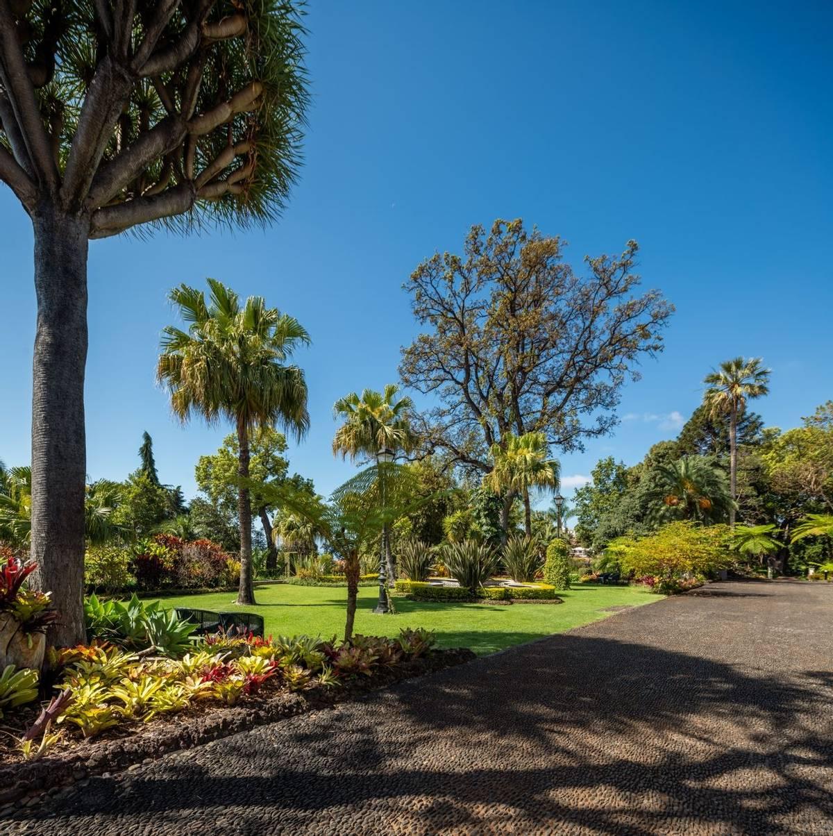 Portugal - Gardens of Madeira - Alberto Reynolds  - 29. QUINTA JARDINS DO LAGO GARDENS.jpg
