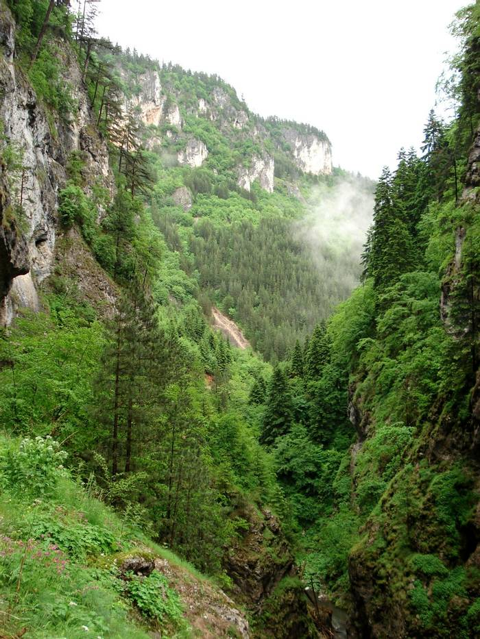 Trigrad Gorge in the rain