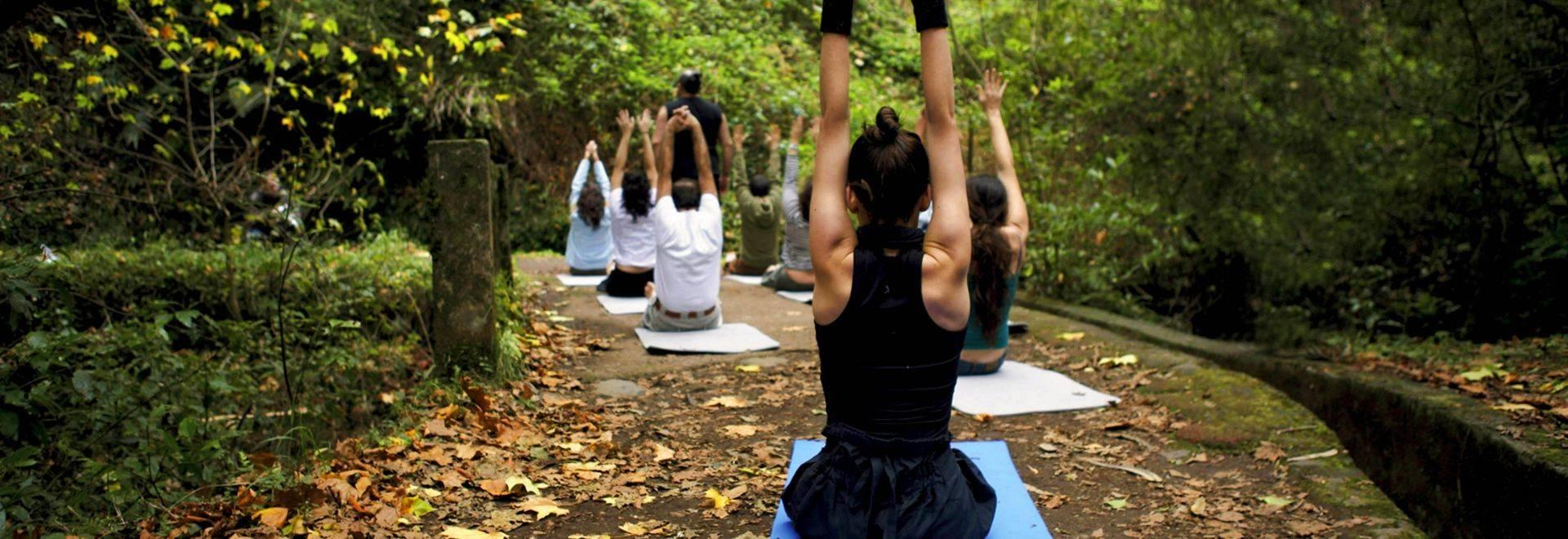 Galo-Resort-forest-yoga.jpg