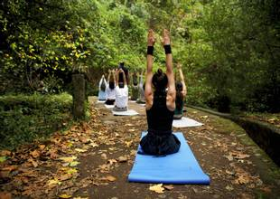 Galo-Resort-forest-yoga.jpg