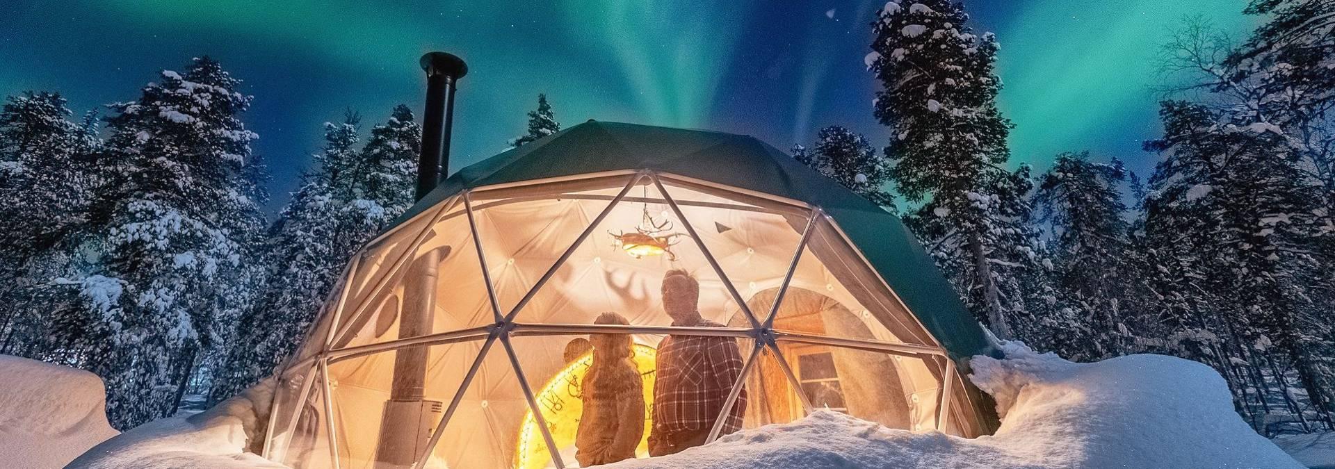 RESIZED Jeris_Dome-2 Credit Antti Pietikainen.jpg