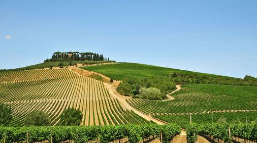 Chianti & the Val d'Elsa Guided Walking Holiday