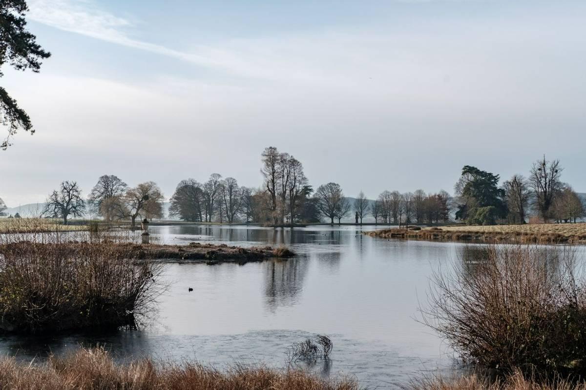 Abingworth - Spring and Winter Walking - Petworth - AdobeStock_246458570.jpeg