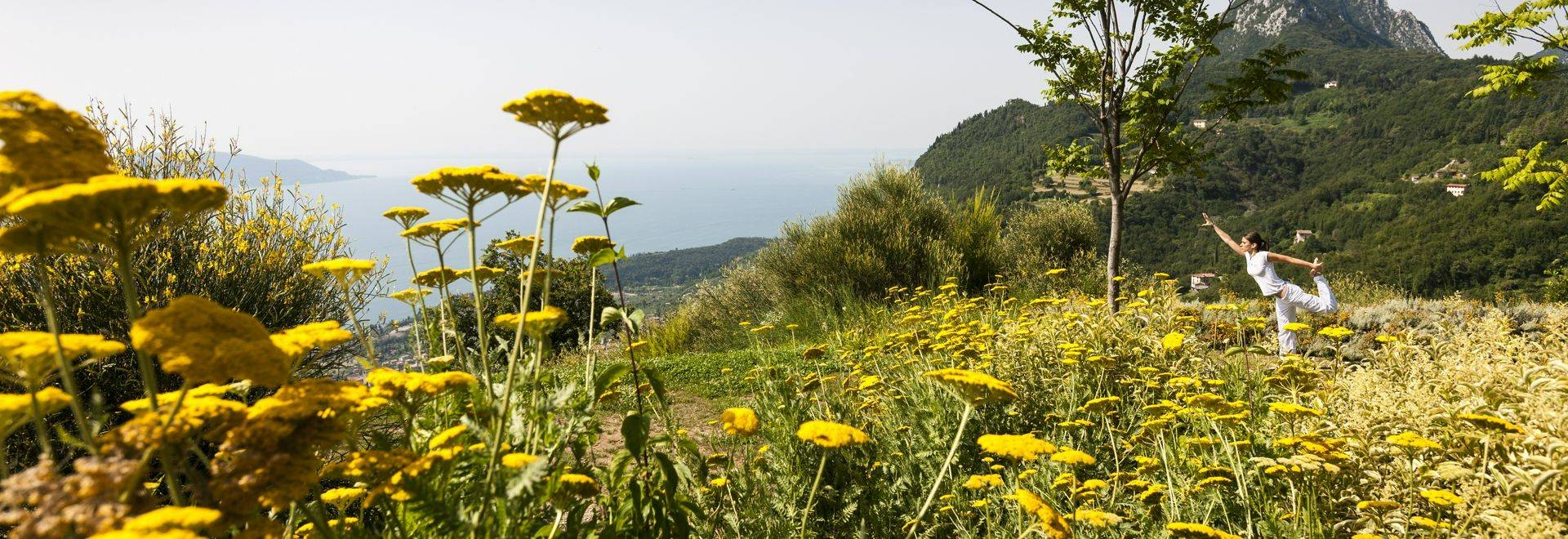 Italy; Lago di Garda; Lefay Resort and Spa; Via Feltrinelli 118; 25084 Gargnano. www.lefayresorts.com, Therapeutic Gardens