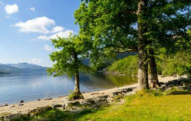 Loch Lomond at rowardennan, Summer in Scotland, UK