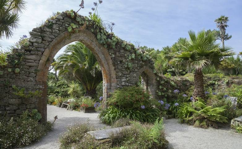 Abbey Gardens, Tresco, Isles of Scilly, England