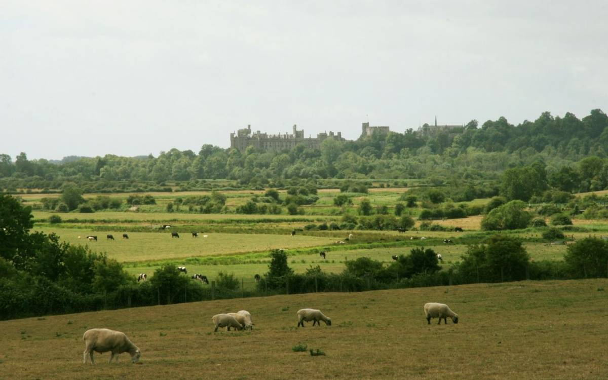 View_of_Arundel_Castle.JPG